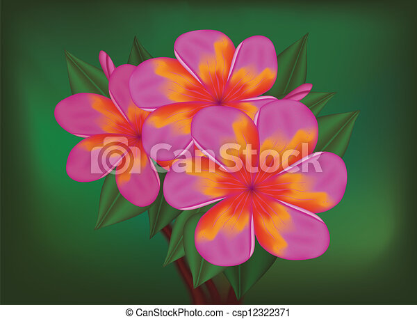 Vector branch of tropical pink flowers frangipani plumeria on dark vector branch of tropical pink flowers frangipani plumeria on dark green leaves background mightylinksfo