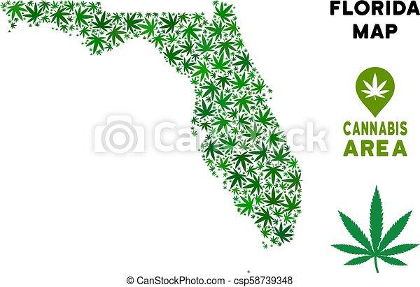 Vector Cannabis Composition Florida Map - csp58739348