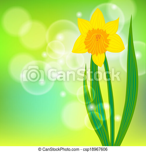 vector card with daffodil on light green bokeh background template