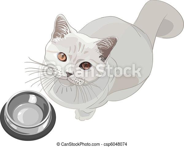 vector cat requests that have - csp6048074