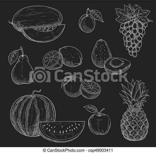 Vector Chalk Sketch Icons Of Exotic Fruits