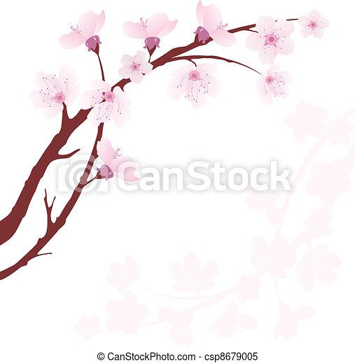 vector cherry branch - csp8679005
