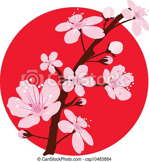 vector cherry branch - csp10483884