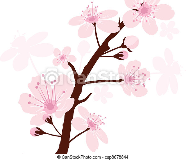 vector cherry branch - csp8678844