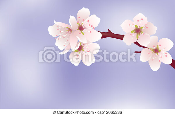 vector cherry branch - csp12065336