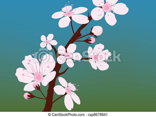 vector cherry branch - csp8678841