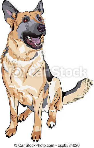 vector color sketch dog German shepherd breed - csp8534020