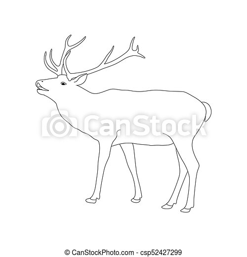 vector coloring book page with reindeer outline drawing