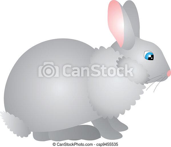 Vector de conejo - csp9455535