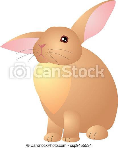 Vector de conejo - csp9455534