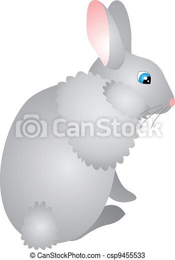 Vector de conejo - csp9455533