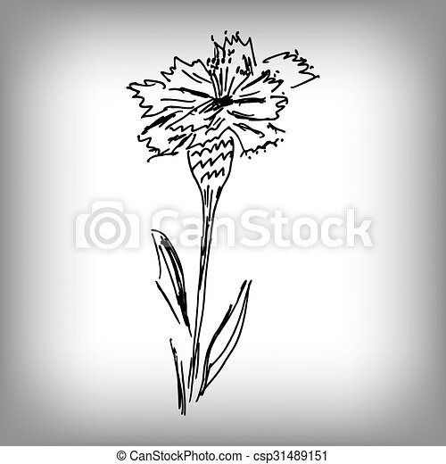 Vector cornflower. Illustration by hand. Monochrome drawing. - csp31489151