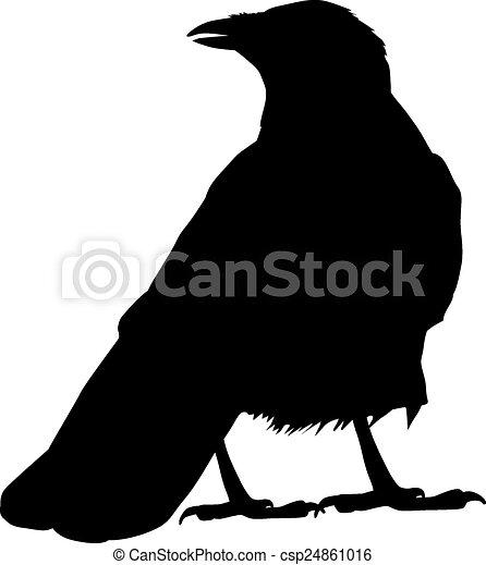 Vector Raven - csp24861016