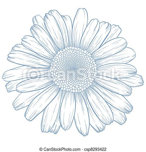 Vector Daisy. - csp8293422