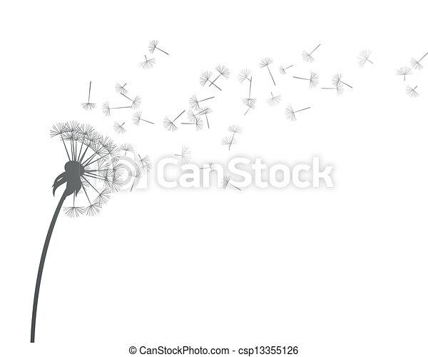Vector Dandelion - csp13355126