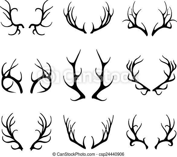 Vector deer antlers isolated on white - csp24440906