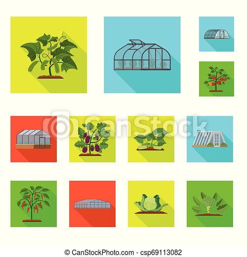 Vector design of greenhouse and plant logo. Collection of greenhouse and garden stock symbol for web. - csp69113082