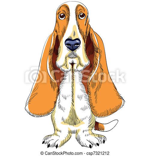 vector dog Basset Hound breed - csp7321212