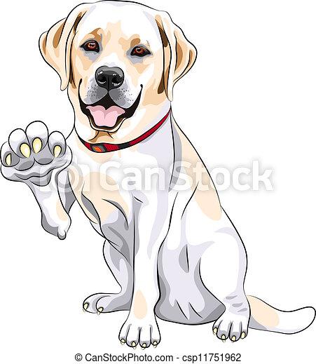 vector dog labrador retriever cheerful smiles and gives a clip rh canstockphoto com labrador retriever free clip art free labrador retriever silhouette clip art