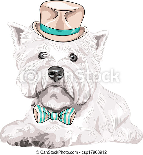 vector dog West Highland White Terrier breed in hat and bow tie - csp17908912