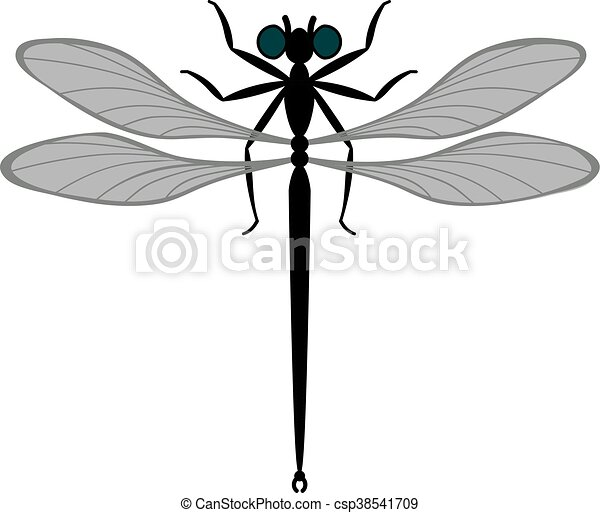 vector dragonfly can be used as illustration or icon vector rh canstockphoto com dragonfly vector free dragonfly vector drawing