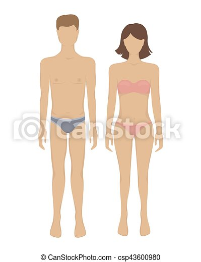 Vector Female And Male Body Man And Woman Body Vector Illustration