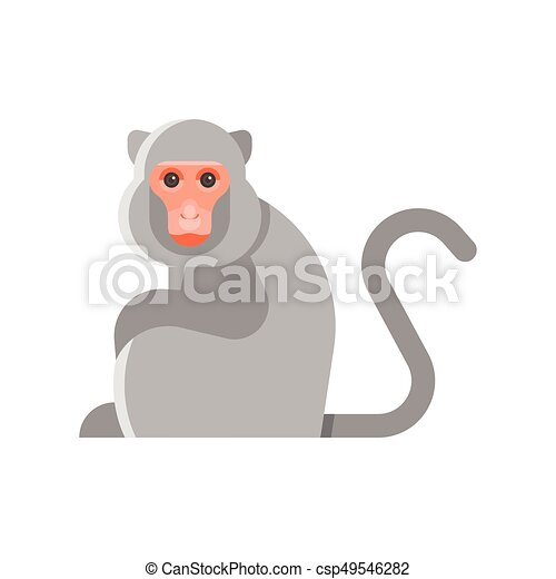 Vector flat style illustration of monkey. - csp49546282