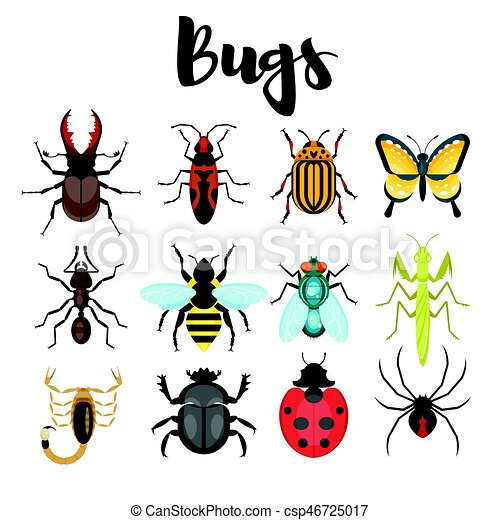 Vector flat style set of various colorful bugs. - csp46725017