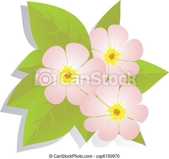 Vector de flores - csp6150970