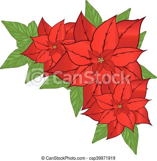 Vector Flor Flor De Nochebuena Vector Flor él Ilustración