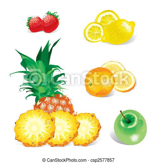 (vector), frutte - csp2577857