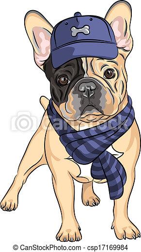 vector funny cartoon hipster dog  French Bulldog breed  - csp17169984