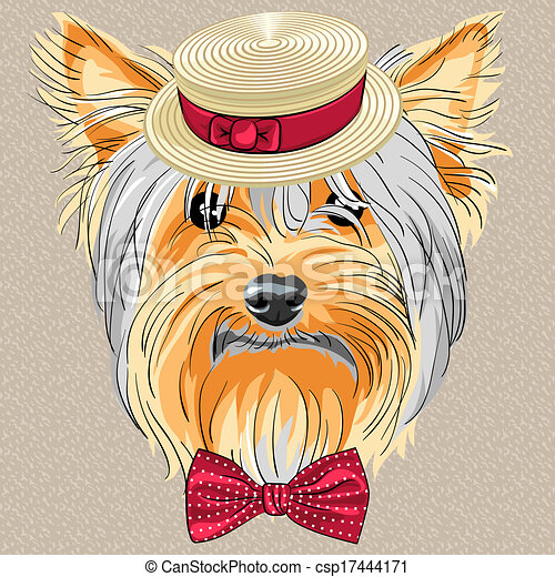 vector funny cartoon hipster dog Yorkshire Terrier - csp17444171