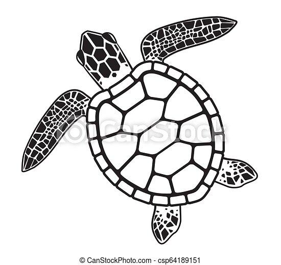 Vector graphic illustration of a Sea Turtle - csp64189151