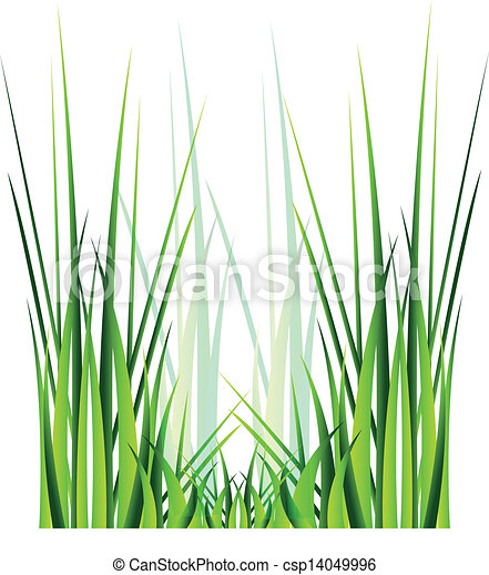 vector green grass isolation over white background eps vectors rh canstockphoto com