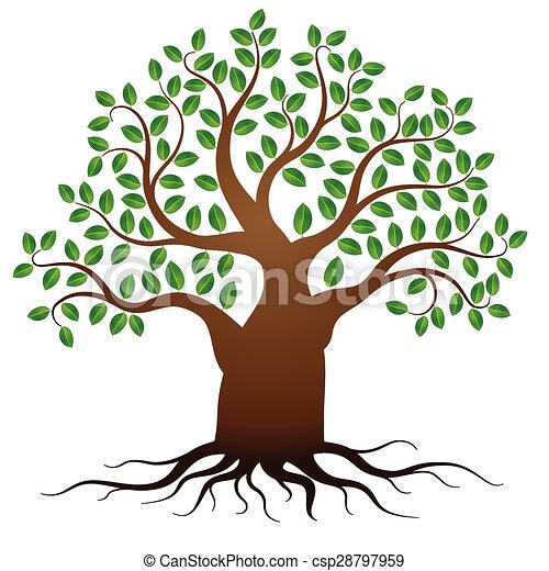 Vector green tree with roots - csp28797959