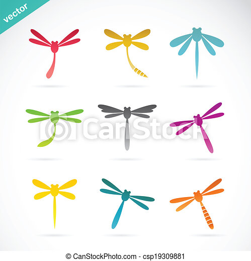 Vector group of colorful dragonfly - csp19309881