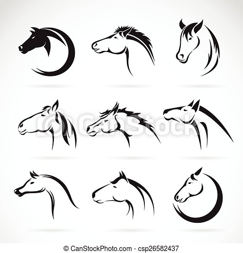 Vector group of horse head design on white background. - csp26582437