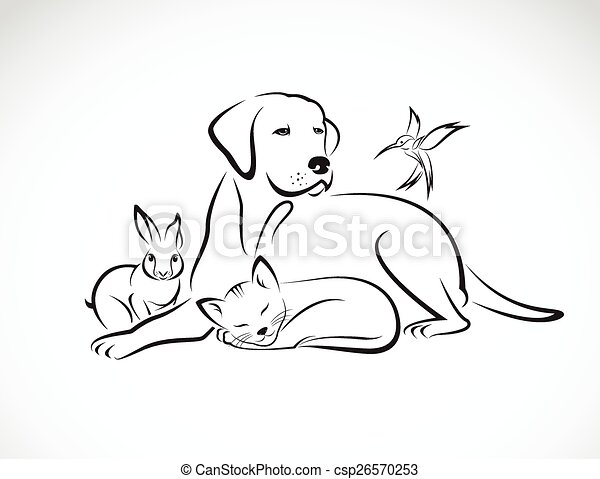 Vector group of pets - Dog, cat, bird, rabbit, isolated on white background - csp26570253