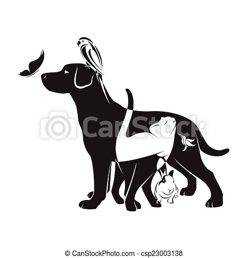 Vector group of pets - Dog, cat, bird, butterfly, rabbit, isolated on white background - csp23003138