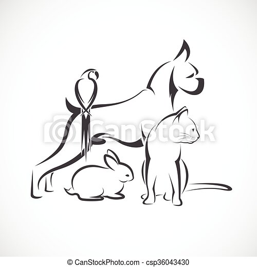 Vector group of pets - Dog, cat, bird, rabbit, isolated on white background - csp36043430