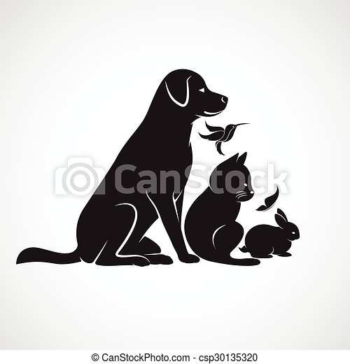 Vector group of pets - Dog, cat, bird,butterfly, rabbit, isolated on white background - csp30135320