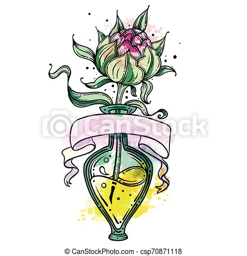 Vector hand drawn outline illustration of peony with watercolor, peony in glass vase, on white isolated background. Good for print. Ideas for postcards and logos, tattoos, stickers - csp70871118