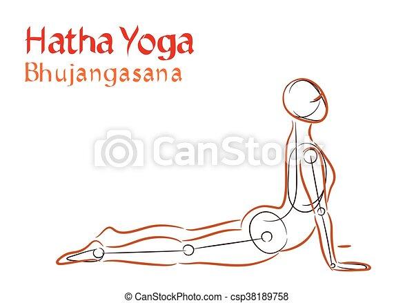 Vector Hatha Yoga Bhujangasana