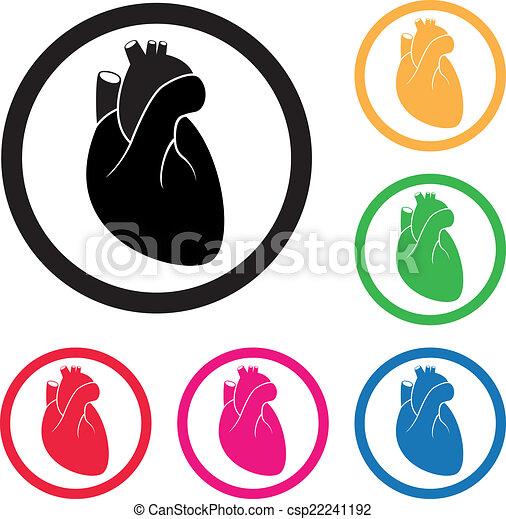 vector human heart cardio icon rh canstockphoto com human heart vector illustration human heart vector free