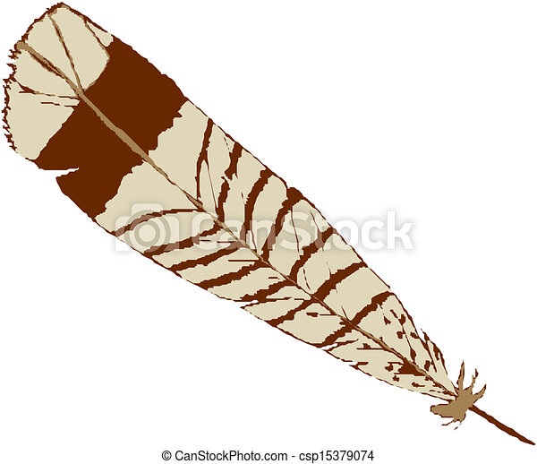 vector illustration bird feather vectors illustration search rh canstockphoto com Feather Bird SVG Curved Feather Turning into Birds