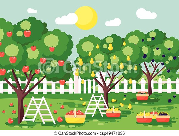 Stock Vector Illustration Cartoon Harvesting Ripe Fruit