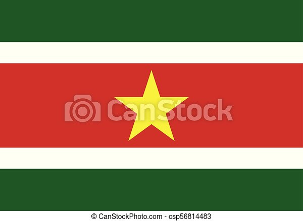 vector illustration flag of suriname - csp56814483