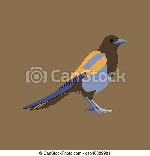 Vector illustration in flat style of magpie - csp46389981
