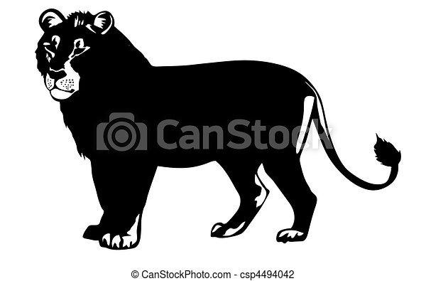 vector illustration lion on white background - csp4494042
